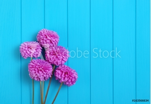 Picture of  Flowers on blue painted wooden planks.