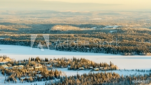 Picture of Frozen lake and spruce forest in winter. Finland, Ruka