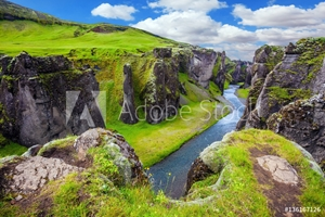 Picture of Green Tundra in summer